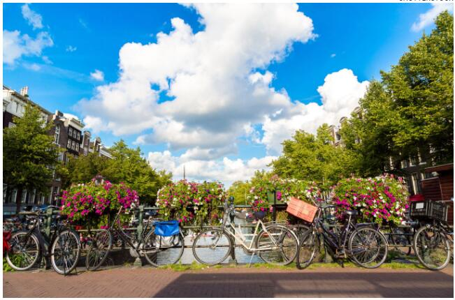 The most trusted ride game for Amsterdamers is the bicycle