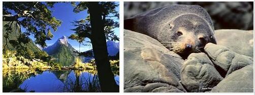 Tongariro National Park (World Heritage)