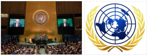 United Nations: New Members, New Questions
